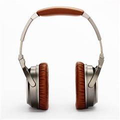 头戴式有线耳机HD500(钛金灰)棕色 WS